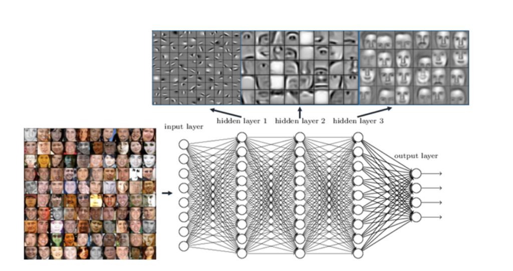 modèle de réseau de neurone