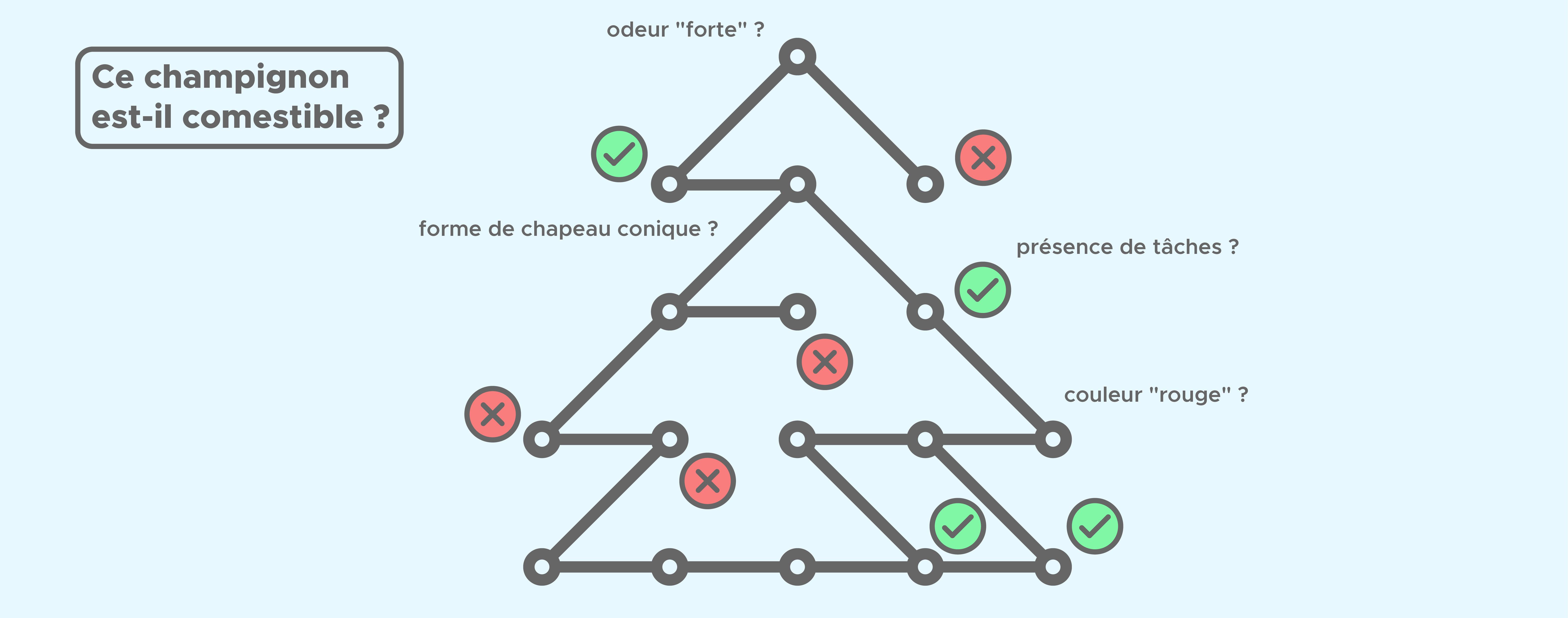Random Forest : Forêt d'arbre de décision- Définition et fonctionnement