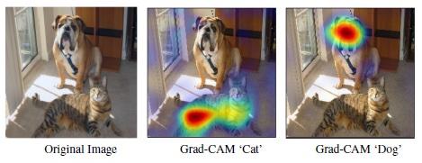 Résultat de la méthode Grad-CAM